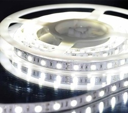 Addressable white led strip in China